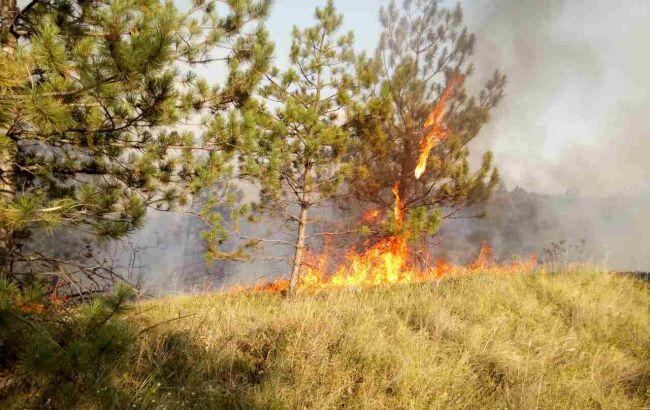 В минувшие сутки в Украине произошло 308 пожаров на открытых территориях