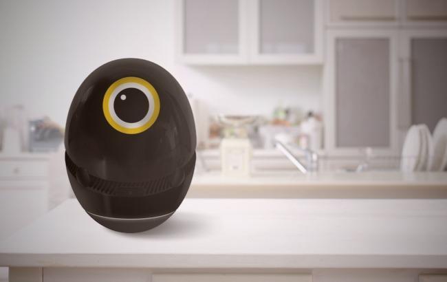 Фото: Яйцо с искусственным интеллектом (helloegg.net)