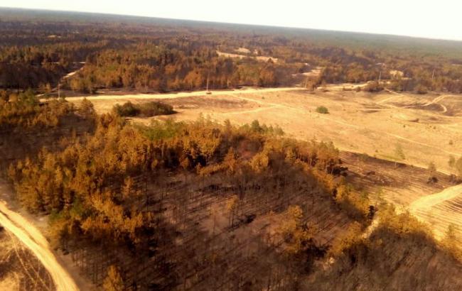 Фото: наслідки лісової пожежі у Херсонській області (dsns.gov.ua)