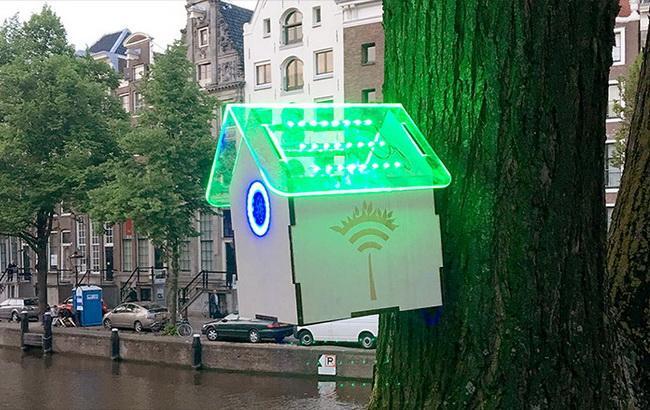 Фото: голландський роутер Tree Wi-Fi (CNN)