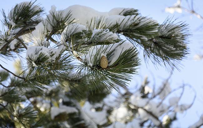 Синоптики предупреждают о дожде и мокром снеге в западных областях