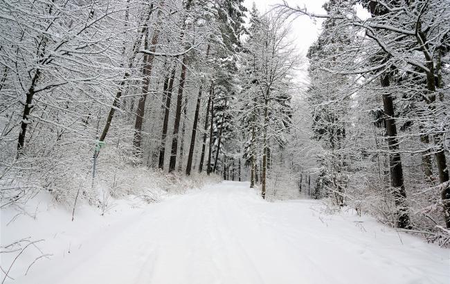 Под Харьковом 12-летняя девочка провела больше часа под тонной снега