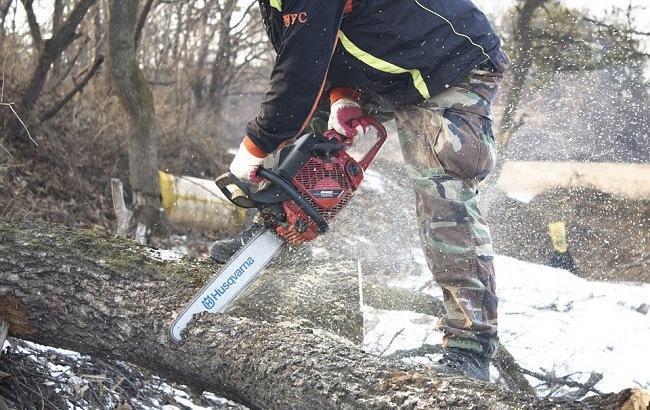 """Лісничий під Києвом """"нарубав дров"""" на сотні тисяч гривень"""