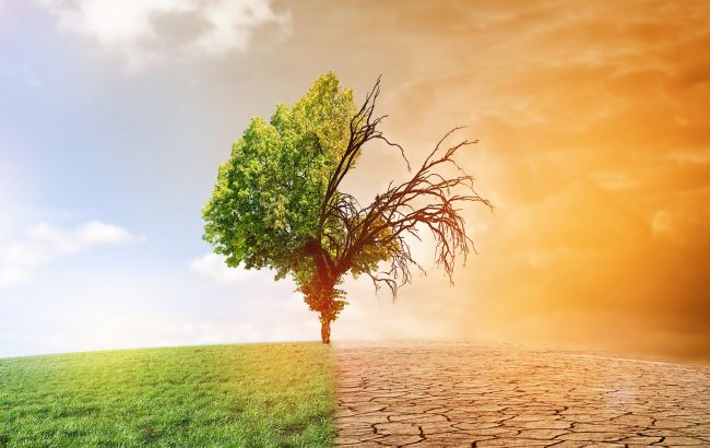 В Кабмине назвали причины изменения климата в Украине