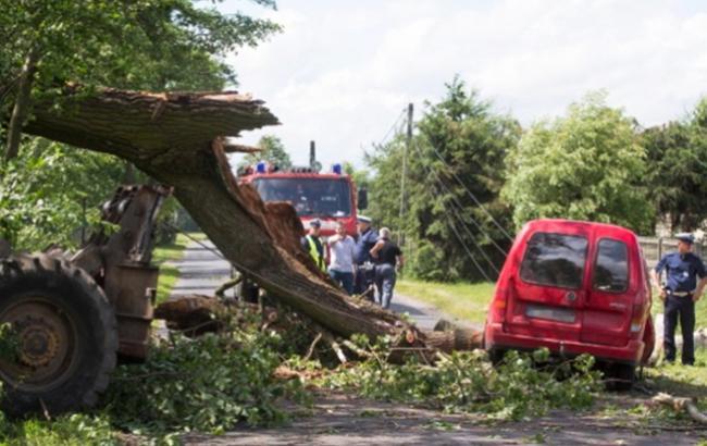Фото: ураган в Польше (YantarnyOstrov twitter)