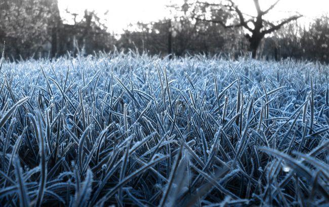 Фото: заморозки в Украине