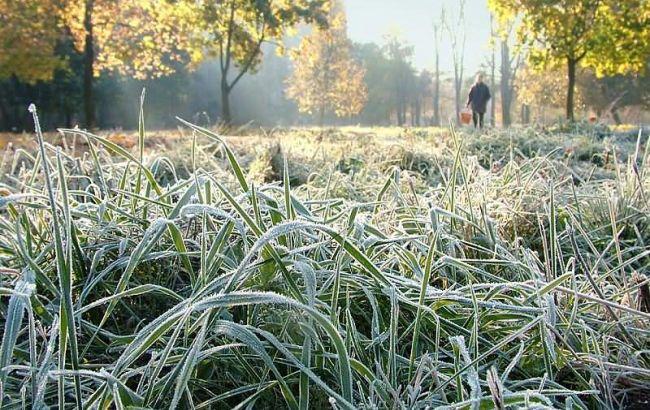 Фото: в Україні місцями очікуються заморозки
